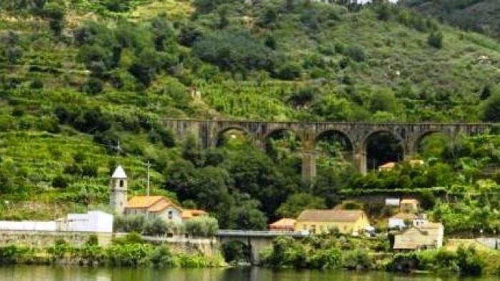 Cruise Régua Porto Régua RD (Downstream)